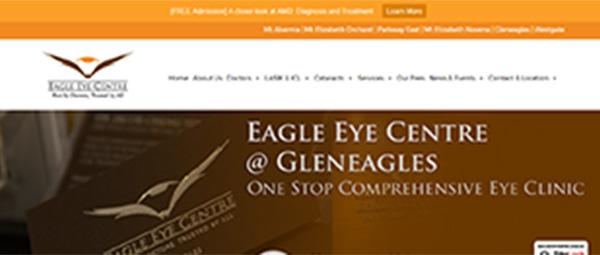 Eagle Eye Centre Internet Marketing Singapore Online