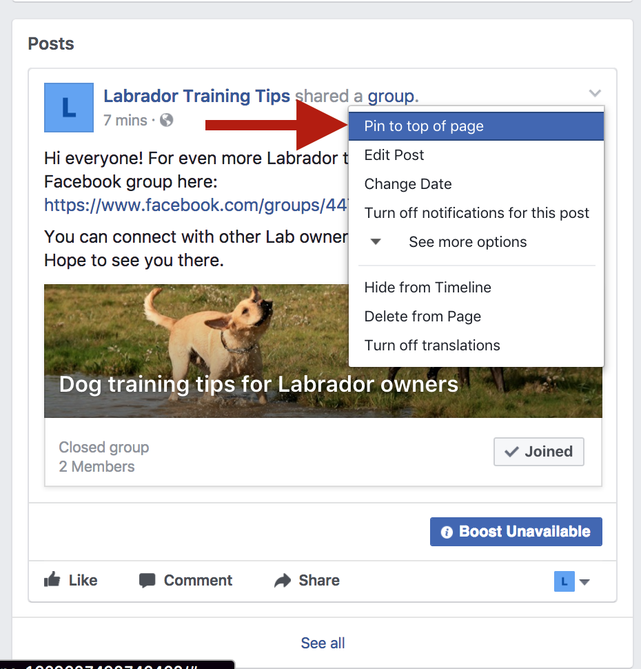 Get Leads from Social Media like the Pros